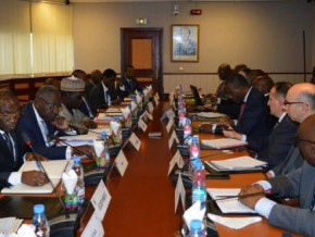 cameroon-the-new-economic-and-financial-program-will-be-submitted-for-imf-executive-board-s-approval-in-june-2021-sinking-fund-caa-says