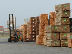 despite-stronger-wood-exports-to-china-cameroon-remains-minor-supplier-to-the-country