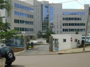 cameroon-csph-recorded-cfaf7-bln-drop-in-its-net-result-between-2017-and-2019