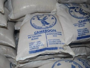 semry-suggests-increased-subsidy-to-reduce-the-price-of-rice-in-cameroonian-markets