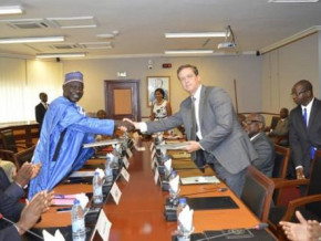 swiss-tree-global-to-implement-an-industrial-high-yield-nursery-system-in-cameroon