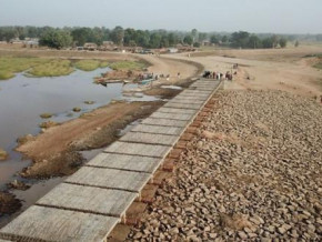 cameroon-will-launch-the-development-of-11-000-ha-of-hydro-agricultural-and-fish-farming-perimeter-in-the-north-this-year