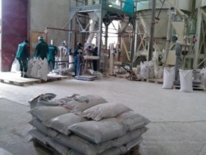 flour-production-company-sitrabacam-sarl-to-boost-production-capacity-with-xaf4-bln-invesment