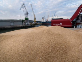 cameroon-imported-860-kilotons-of-wheat-in-2020-bmn