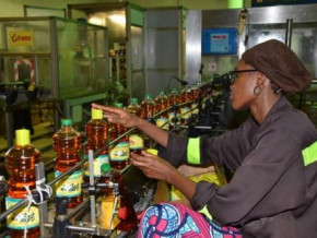 sodecoton-oil-sales-dipped-by-xaf1-7-bln-in-2019-because-of-malfunctions-in-the-plastic-bottle-production-chain
