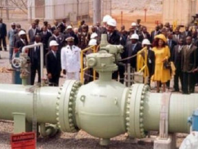 exxon-mobil-and-petronas-plan-to-dispose-of-stakes-in-chad-cameroon-oil-pipeline