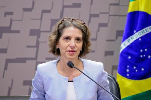 there-are-many-sectors-in-which-brazil-can-provide-cameroon-its-expertise-vivian-loss-sanmartin