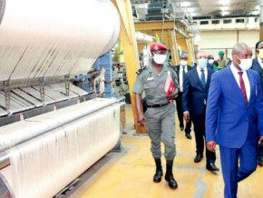 cameroon-cicam-purchased-only-1-of-fiber-cotton-produced-during-the-2019-2020-campaign