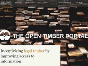 cameroon-is-the-2nd-most-active-country-on-the-open-timber-portal