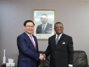 vietnam-moves-to-strengthen-its-presence-in-cameroon