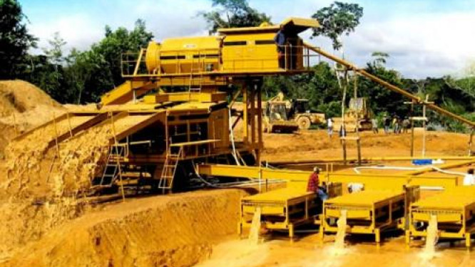 dynasty-mining-suspended-for-6-months-over-illegal-mining-operations
