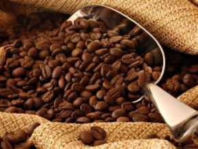 cameroonian-robusta-coffee-rises-to-multi-month-high-in-may-2021-as-demand-keeps-growing