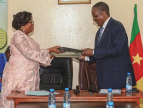 cameroon-ceneema-and-sodepa-partner-to-boost-farming-in-ranches
