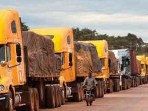 covid-19-though-in-surplus-cameroon-s-trade-balance-with-cemac-neighbors-fell-by-9-yoy-in-2020