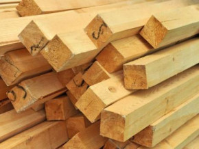 cameroon-beac-forecasts-revival-of-sales-and-production-in-the-logging-sector