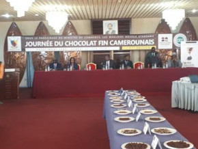 french-chocolate-makers-praise-cameroonian-cocoa-during-tasting-session-in-yaounde