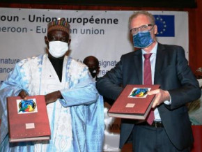 cameroon-the-eu-provides-cfaf10-bln-to-support-transformation-in-cotton-producing-areas