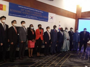 cameroon-presents-its-2020-2030-electricity-development-strategy-to-korean-investors