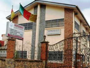 cameroon-coronavirus-forces-over-cfaf500-mln-reduction-in-the-budget-of-local-materials-promotion-agency-mipromalo