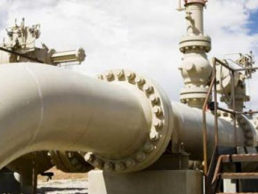 chad-cameroon-pipeline-chad-initiated-no-negotiations-for-the-sales-of-its-21-stake-sht-s-boss-says