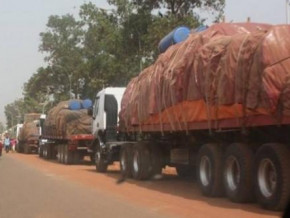 towards-a-downward-revision-of-transit-costs-along-the-douala-bangui-and-douala-ndjamena-corridors