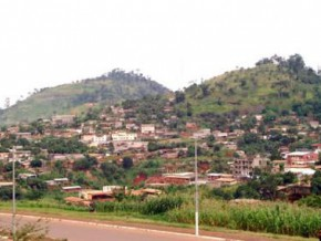 to-protect-the-peri-urban-ecosystem-thousands-of-trees-will-be-planted-in-2017-in-the-capital-of-cameroon