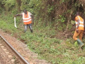 camrail-increases-wages-by-24-3-for-local-communities-that-weed-off-its-railway-tracks