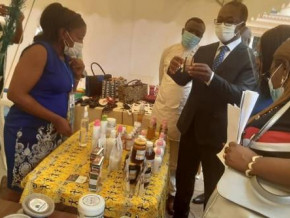 cameroon-minpmeesa-organizes-workshop-to-improve-the-marketability-of-artisan-products