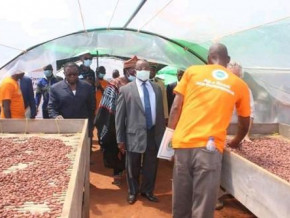 cameroon-three-additional-cocoa-post-harvest-treatment-centres-of-excellence-to-be-built-in-2021