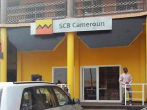 cameroon-no-scb-s-foreign-exchange-operations-were-rejected-in-sep-2019-beac