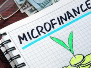 cameroon-microfinance-institutions-performed-better-yoy-in-2019-ministry-of-finance